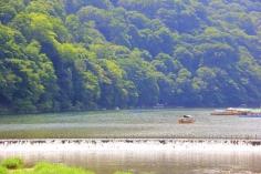 A Gondola on the Hozu (Katsura) River