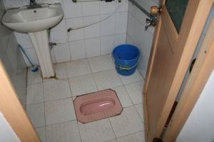 Standard 'hole-in-the-ground' Toilet