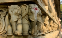 A Bindi'd Elephant