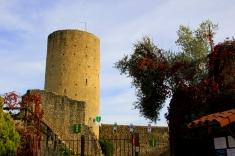 Chateau d'Aurignac, built by the Cathars circa. 1240