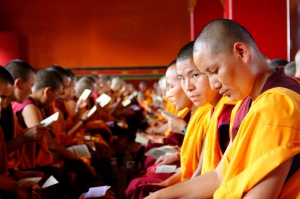 Buddhist Nuns are called Anis and aren't easy to spot...
