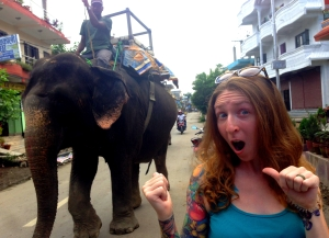 Elephants on Parade!