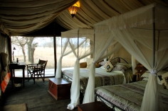 We heard lions and hyenas outside our tent every night!