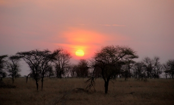 But nothing can ruin such a beautiful African sunset!