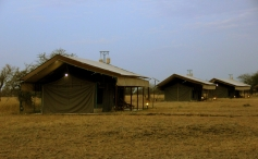 Luxury Tented Camps (inside the park) are the best way to stay!